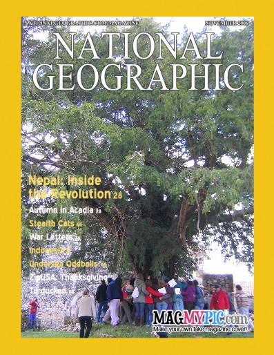 Tejo de Abamia en National Geographic