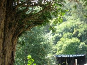 Tejo de La Braña al dia siguiente de la fiesta. 16 agosto '08.