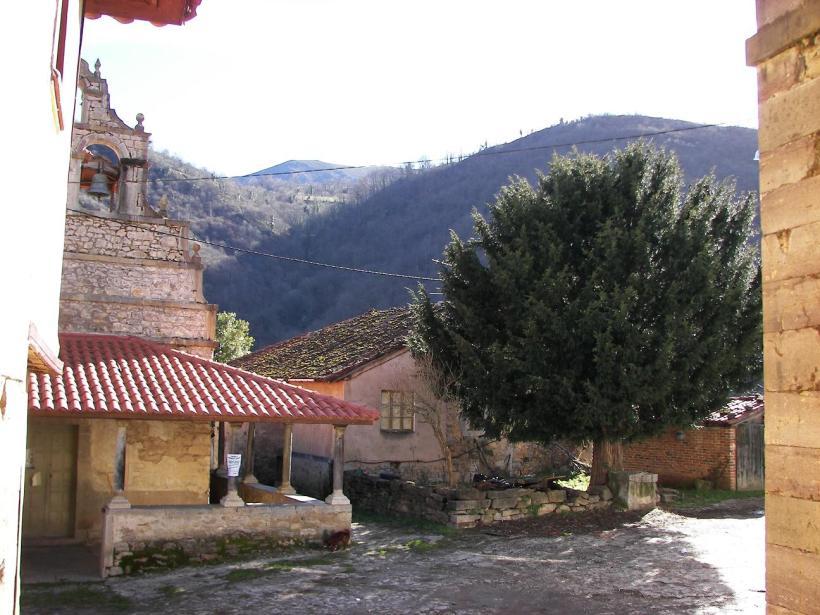 Teja de las Villas. 21 febrero 2007