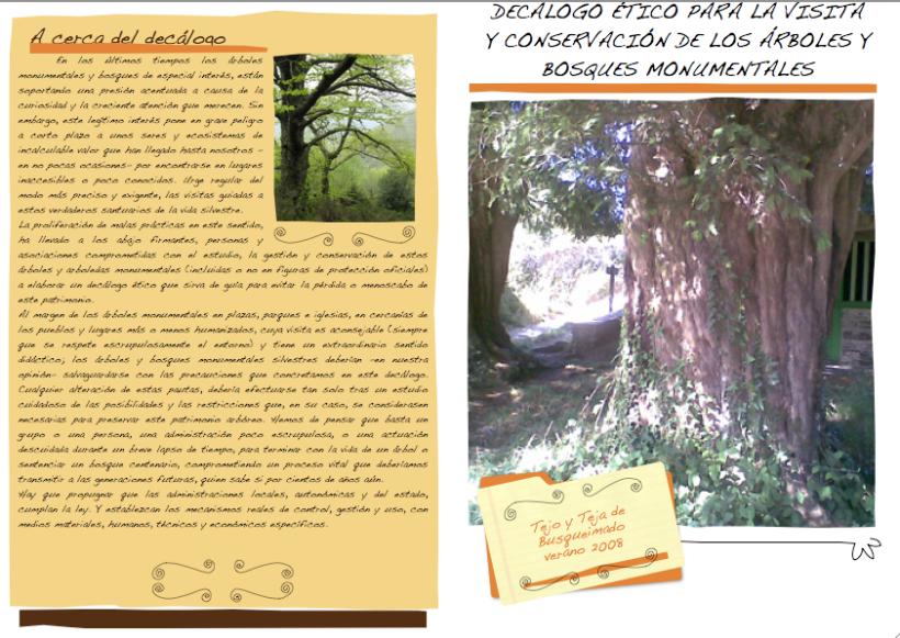 decálogo árboles monumentales