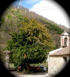 San Miguel del Río. Lena.
