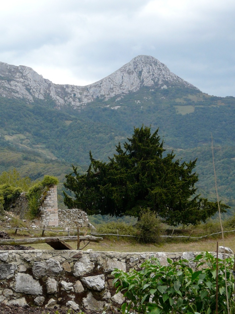 tejo de Perueño