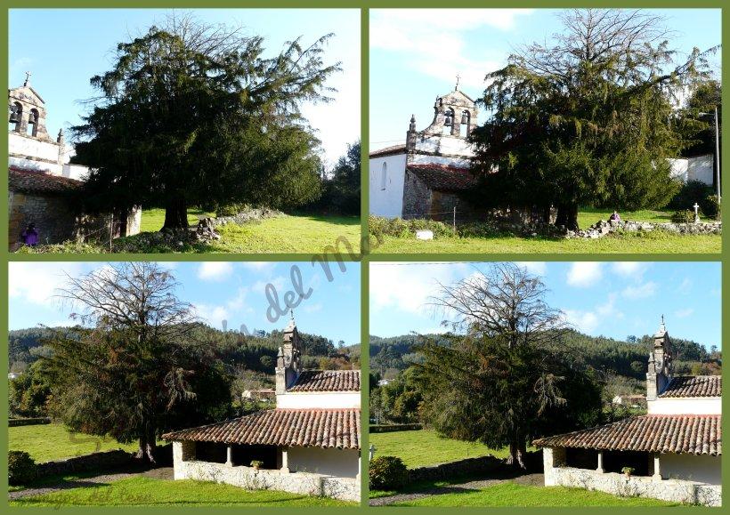 1-fotos dcbre '13-001