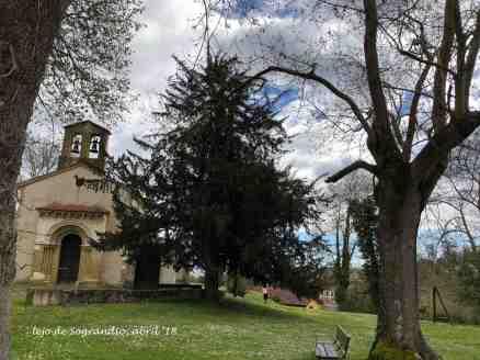 tejo de Sograndio, Oviedo